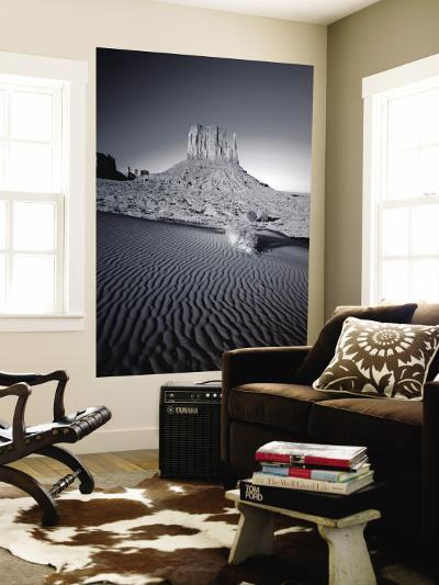 Monument Valley and Sand Dunes, Arizona, USA-Steve Vidler-Wall Mural