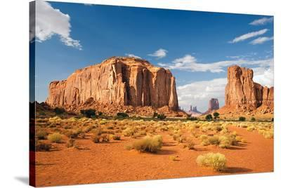 Monument Valley North Window--Stretched Canvas Print