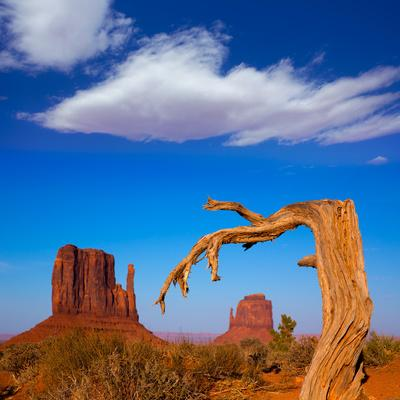 https://imgc.artprintimages.com/img/print/monument-valley-west-and-east-mittens-butte-utah_u-l-q13f9tc0.jpg?p=0