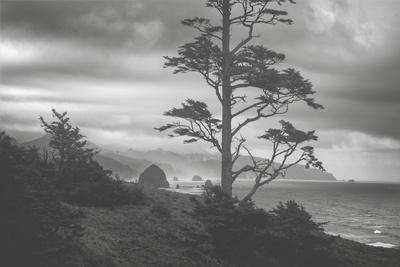 https://imgc.artprintimages.com/img/print/moody-cannon-beach-black-and-white-oregon-coast_u-l-pwc2530.jpg?p=0