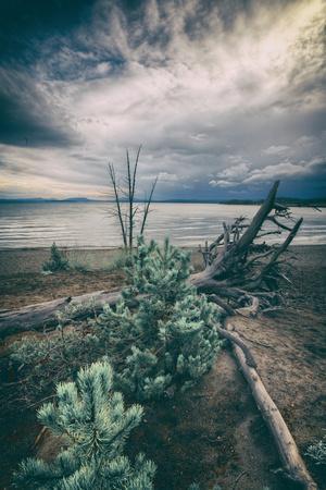 https://imgc.artprintimages.com/img/print/moody-lakeside-storm-yellowstone_u-l-pntwmf0.jpg?p=0