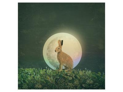 https://imgc.artprintimages.com/img/print/moon-3_u-l-f8mzig0.jpg?artPerspective=n