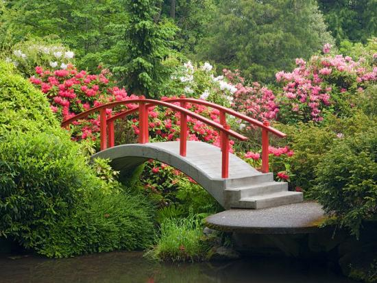 Moon Bridge and Blossoming Rhododendrons, Kubota Garden, Seattle, Washington, USA-Jamie & Judy Wild-Photographic Print