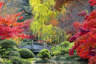 Moon Bridge in the Japanese Gardens-Dean Fikar-Photographic Print