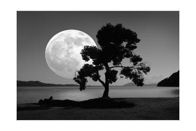 Moon Rising Over the Sea-Detlev Van Ravenswaay-Giclee Print
