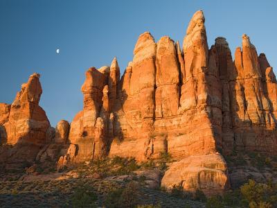Moon Setting over Rock Pinnacles at Chesler Park, The Needles, Canyonlands National Park, Utah, USA-Jamie & Judy Wild-Photographic Print