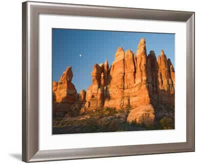 Moon Setting over Rock Pinnacles at Chesler Park, The Needles, Canyonlands National Park, Utah, USA-Jamie & Judy Wild-Framed Photographic Print