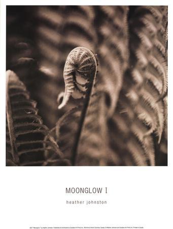 https://imgc.artprintimages.com/img/print/moonglow-i_u-l-f8njwm0.jpg?p=0