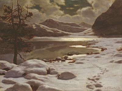 https://imgc.artprintimages.com/img/print/moonlight-in-winter_u-l-ppo4120.jpg?p=0