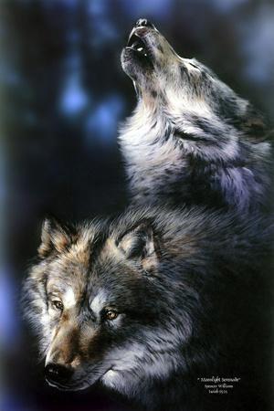 https://imgc.artprintimages.com/img/print/moonlight-serenade_u-l-psfme60.jpg?p=0