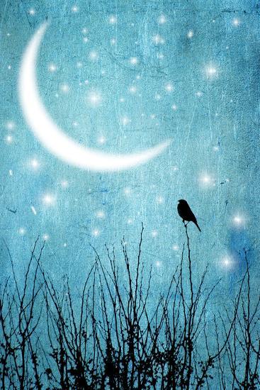 Moonlight Sonata-Marta Nardini-Photographic Print