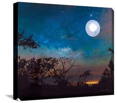 Moonlight--Stretched Canvas Print