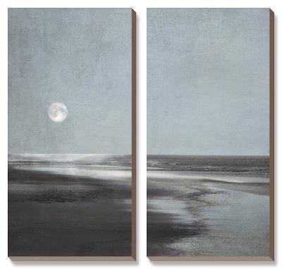 Moonlit Beach-Ily Szilagyi-Canvas Art Set