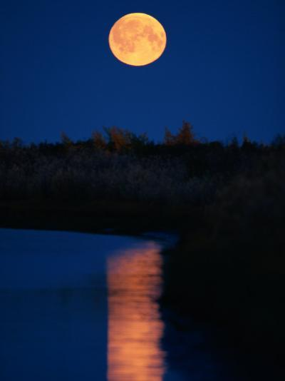 Moonrise over the Delta-Raymond Gehman-Photographic Print