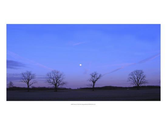 Moonrise-Alicia Ludwig-Art Print
