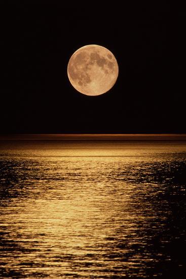Moonrise-David Nunuk-Photographic Print