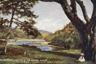 Moore's Tree, Meeting of the Waters, Ovoca, Via Holyhead and Kingstown the Royal Mail Route--Photographic Print