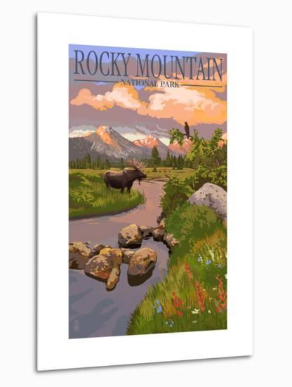 Moose and Meadow - Rocky Mountain National Park-Lantern Press-Metal Print