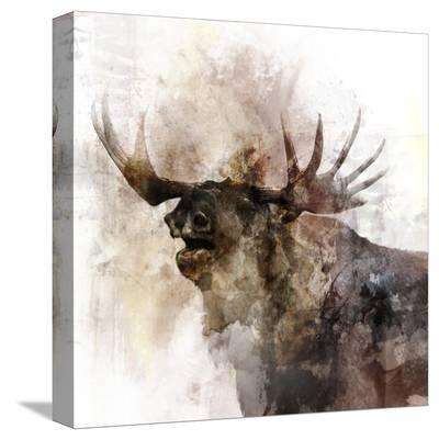 Moose Call-Ken Roko-Stretched Canvas Print