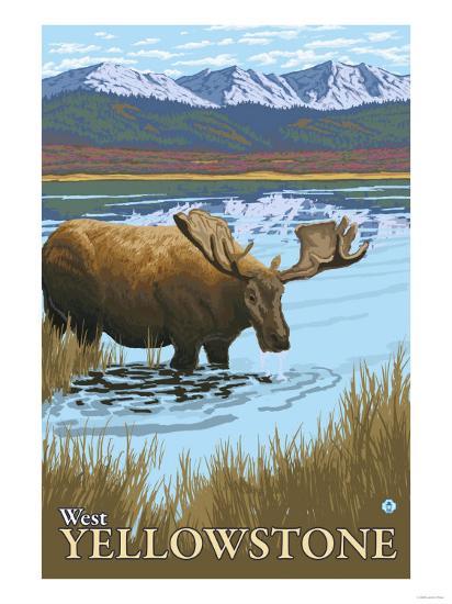 Moose Drinking at Lake, West Yellowstone, Montana-Lantern Press-Art Print