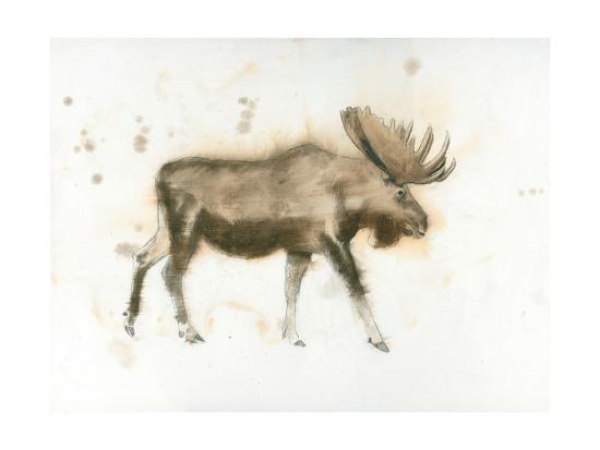 Moose-James Wiens-Art Print