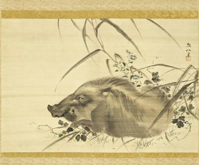 Wild Boar amidst Autumn Flowers and Grasses