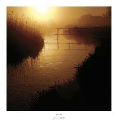 Morning Blush-John Eccles-Art Print