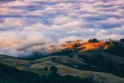 Morning Fog at Mount Diablo, California-Vincent James-Photographic Print