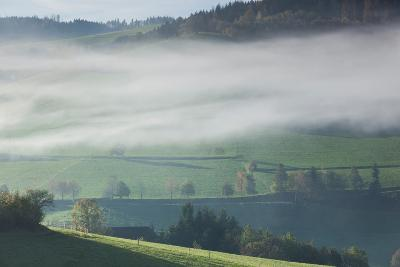 Morning fog in valley during autumn, Horben, Black Forest, Baden-Wurttemberg, Germany--Photographic Print