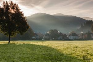 Morning fog over the Schauinsland Strasse, Freiburg Im Breisgau, Black Forest, Baden-Wurttemberg...