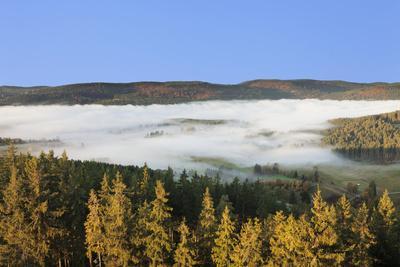 https://imgc.artprintimages.com/img/print/morning-fog-over-the-schluchsee-black-forest-baden-wurttemberg-germany_u-l-q1ey4q00.jpg?p=0