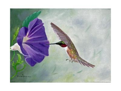 Morning Glory and Anna-Julie Peterson-Art Print