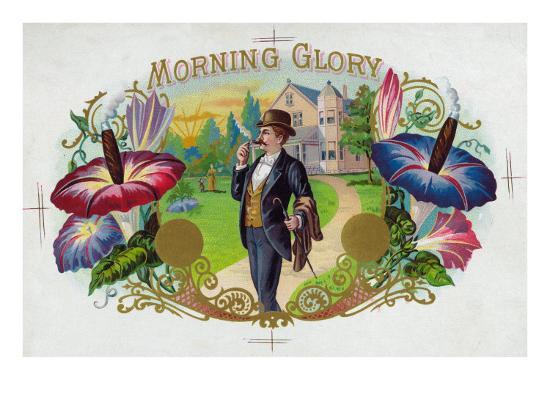 Morning Glory Brand Cigar Box Label-Lantern Press-Premium Giclee Print