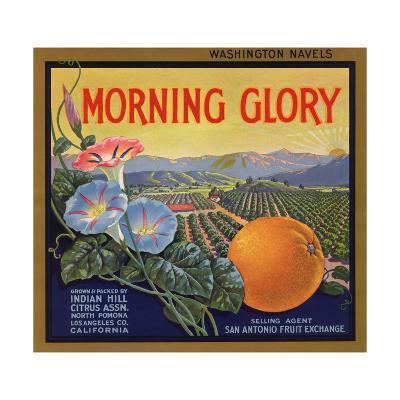 Morning Glory Brand - Pomona, California - Citrus Crate Label-Lantern Press-Art Print