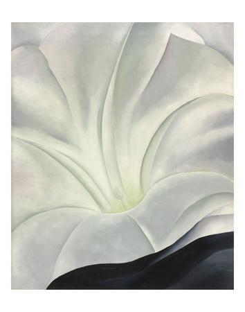 https://imgc.artprintimages.com/img/print/morning-glory-with-black-1926_u-l-f8nlm90.jpg?p=0
