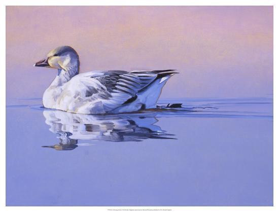Morning Glory-Julie Chapman-Art Print