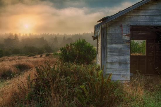 Morning Glow and Coastal Shack-Vincent James-Photographic Print