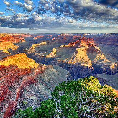 Morning Light at Grand Canyon-prochasson-Photographic Print