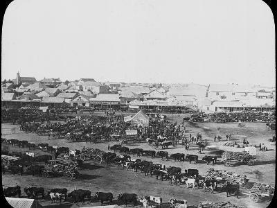 Morning Market, Kimberley, South Africa, C1890--Photographic Print