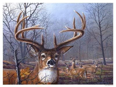 Morning Mist-Carolyn Mock-Art Print