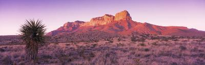 Morning, Mountain, National Park, Guadalupe Mountains, Texas, United States--Photographic Print