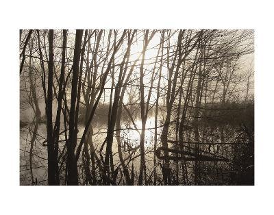 Morning Reflections-Erik Richards-Art Print
