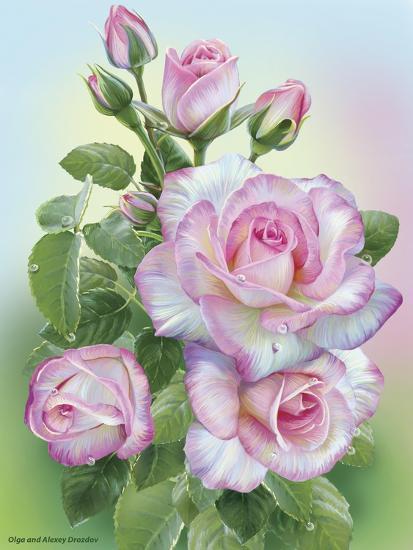 Morning Roses-Olga And Alexey Drozdov-Giclee Print