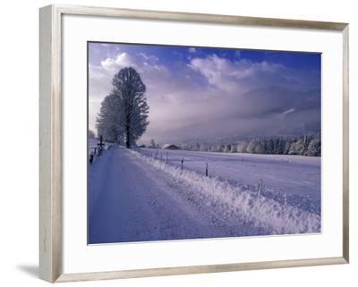 Morning snow on road, Kitzbuhel, Tirol, Austria-Walter Bibikow-Framed Photographic Print