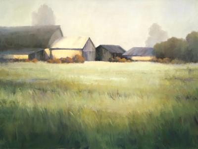 Morning Stillness-David Marty-Premium Giclee Print