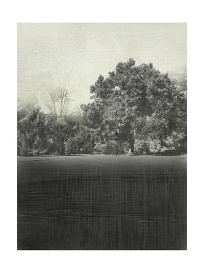 Morning View II-Chariklia Zarris-Art Print