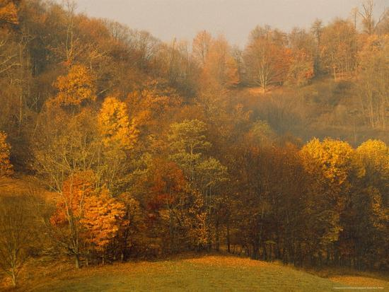 Morning View of Autumn Colors in the Jefferson National Forest-Raymond Gehman-Photographic Print