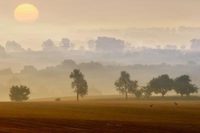 Morning View-Piotr Krol (Bax)-Photographic Print