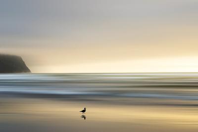 Morning Visit-Marvin Pelkey-Premium Photographic Print