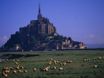 Morning with Flock of Sheep, Normandy-Walter Bibikow-Photographic Print